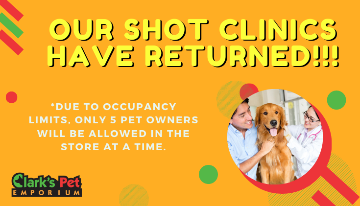 Shot Clinics Are Back